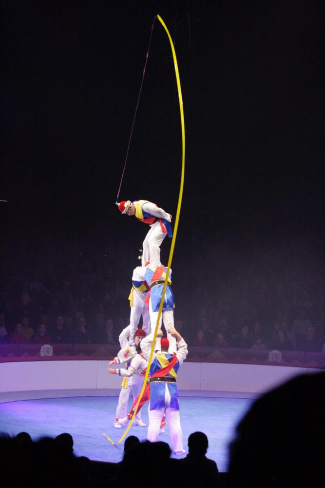 festival circ girona elefant dor 6
