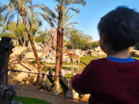 valencia con niños bioparc 4