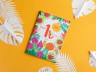 castellnou quaderns estiu