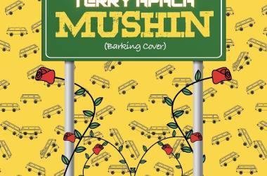 Terry Apala – Mushin (Barking Cover)