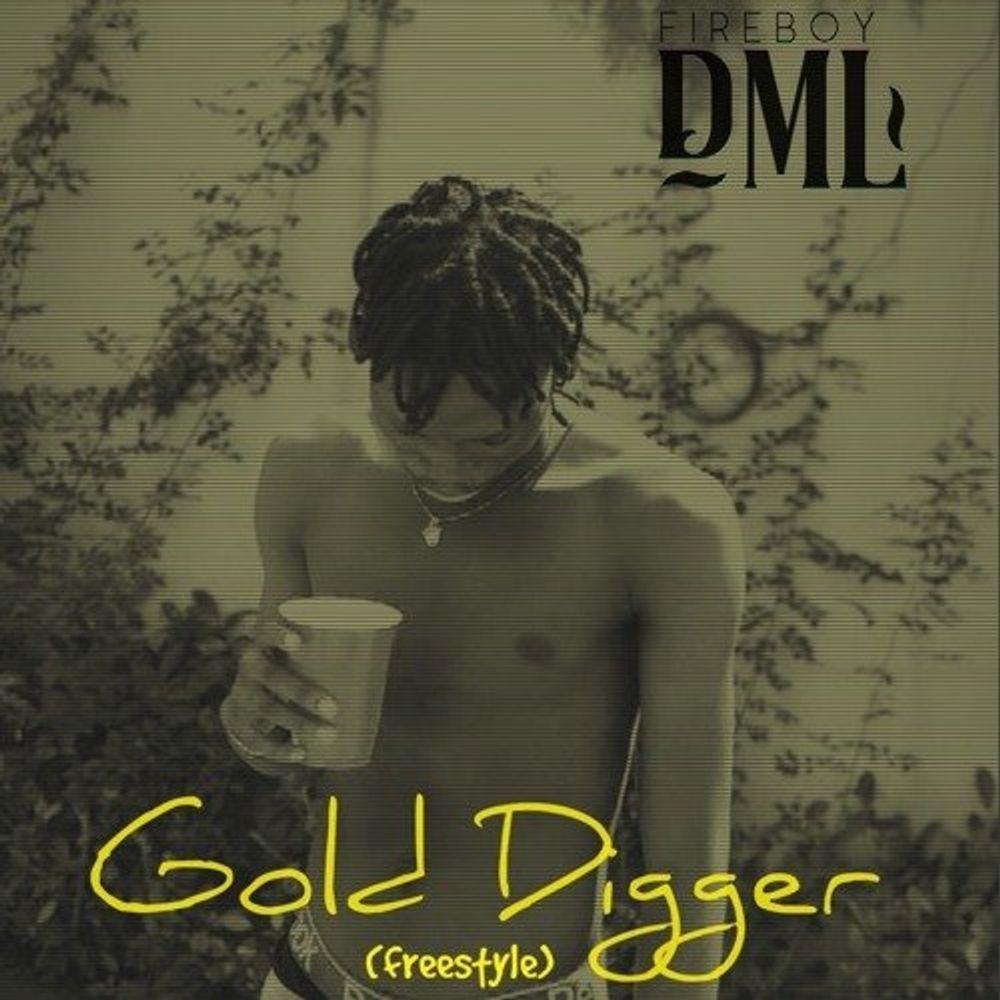 Fireboy DML – Gold Digger