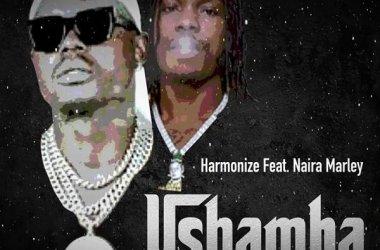 Harmonize ft. Naira Marley – Ushamba (Remix)