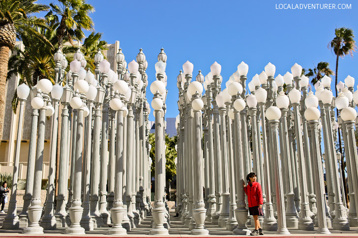 Urban Light at LACMA / LA County Museum of Art.
