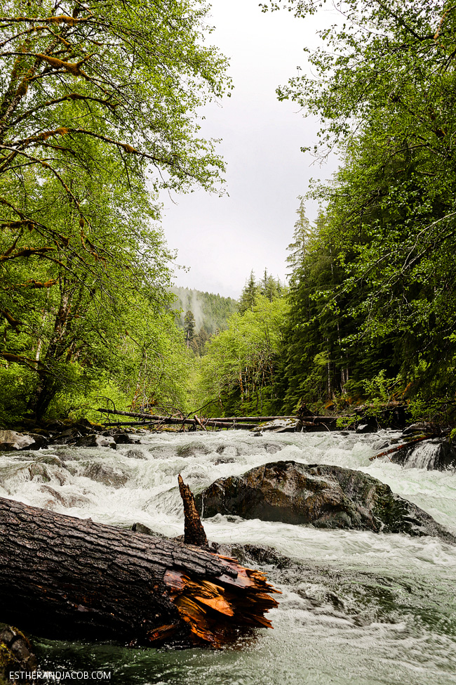 4 Things to Do in Olympic National Park Washington: Salmon Cascades.