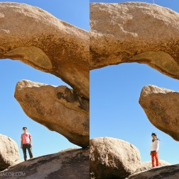 Joshua Tree National Park | Arch Rock Nature Trail