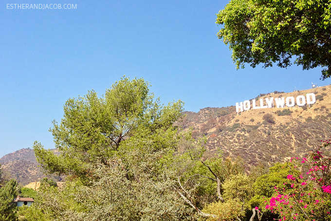 hiking to the hollywood sign. hollywood sign hike address.hollywood sign directions. hiking the hollywood sign. hollywood sign hiking. hollywood sign hike distance. hollywood sign hike directions. hike hollywood sign. hiking to hollywood sign. local adventures LA. local adventures in LA.