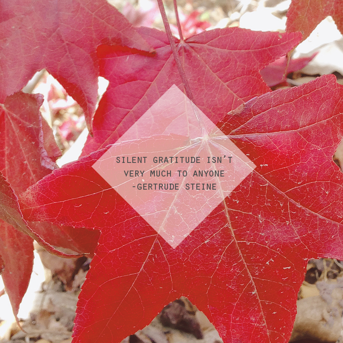 Silent gratitude isn't very much to anyone - Gertrude Steine. My gratitude quote of the week.