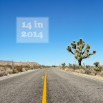 14 in 2014 | New Years Resolutions