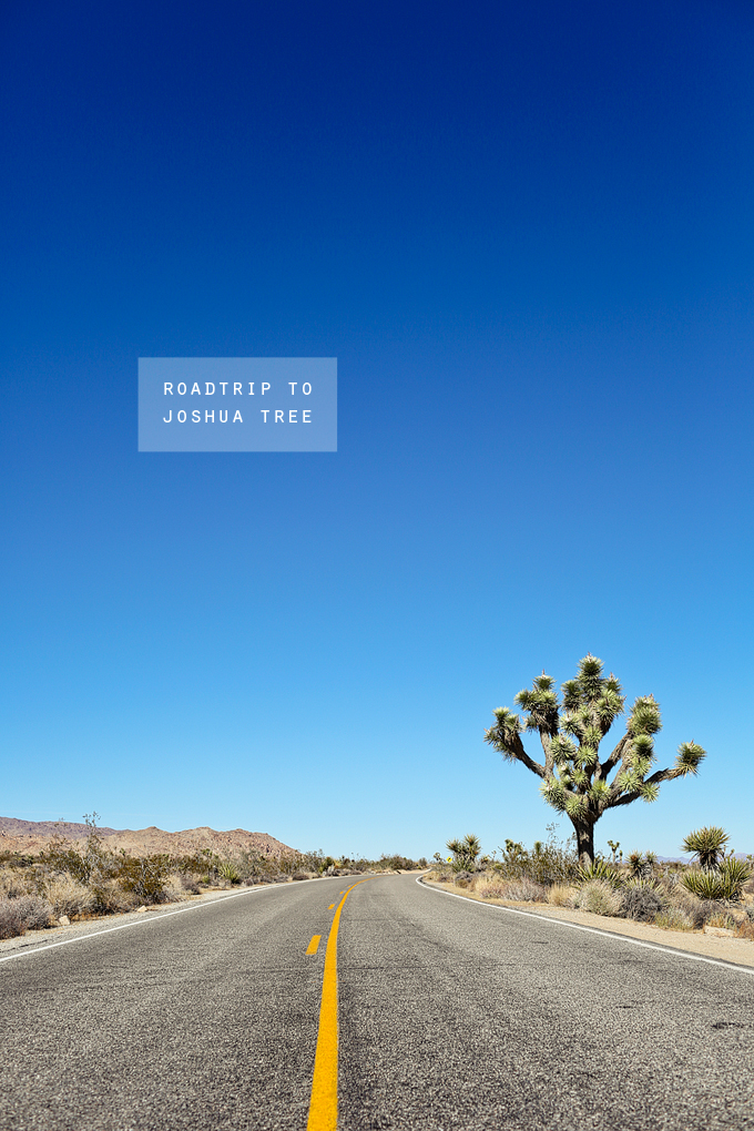 roadtrip to joshua tree