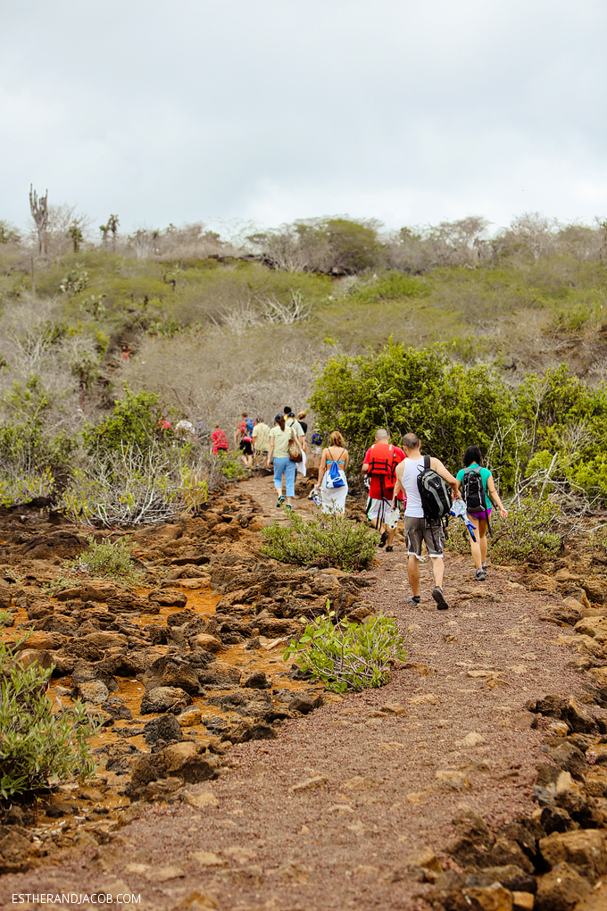 This is a photo of our hike to Las Grietas on Santa Cruz Island.