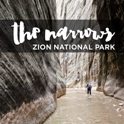 {Photo Guide} Hiking the Narrows Zion National Park Day 1