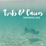 Snorkeling Turks and Caicos with Island Vibes Tours