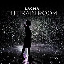 The LACMA Rain Room