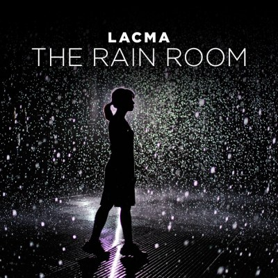 Los Angeles County Museum of Art / LACMA Rain Room.