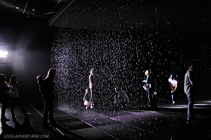 The Rain Exhibit LACMA - Random International combines art and technology to allow you to walk through the rain without getting wet.