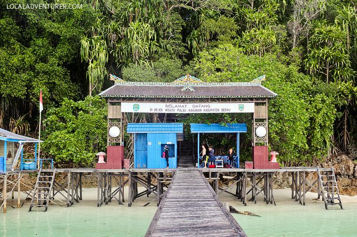 Derawan Island Indonesia // localadventurer.com