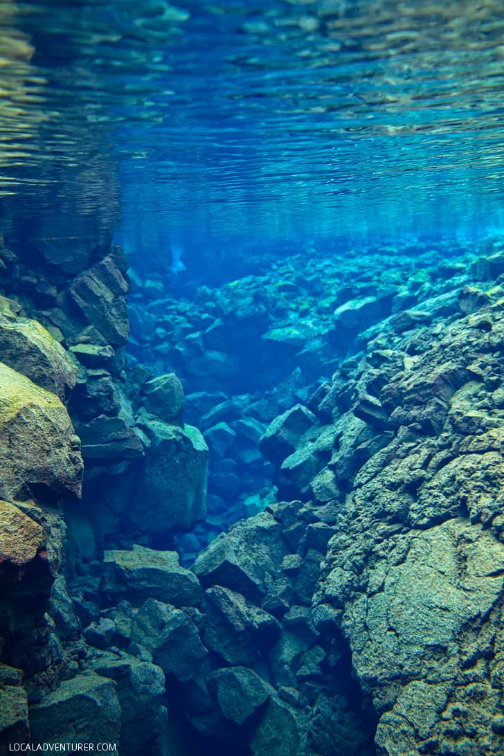 Silfra Fissure Snorkeling in Þingvellir National Park Iceland - Snorkel between the continental plates of Eurasia and North America. The underwater visibility is over 100 m and the water is pristine and drinkable during your dive or snorkel // localadventurer.com