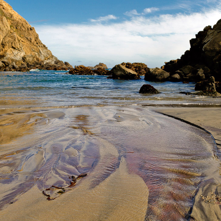 Pfeiffer Beach Big Sur California - famously known for its purple sand beach // localadventurer.com