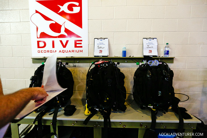 Rebreather Diving in Georgia Aquarium // localadventurer.com
