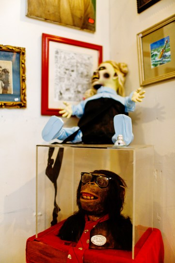 Weird Portland Attractions - the Freakybuttrue Peculiarium and Museum // localadventurer.com