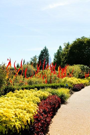 Chihuly at the Atlanta Botanical Garden // localadventurer.com