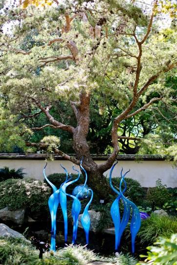 Atlanta Botanical Garden Chihuly in the Garden Exhibit // localadventurer.com