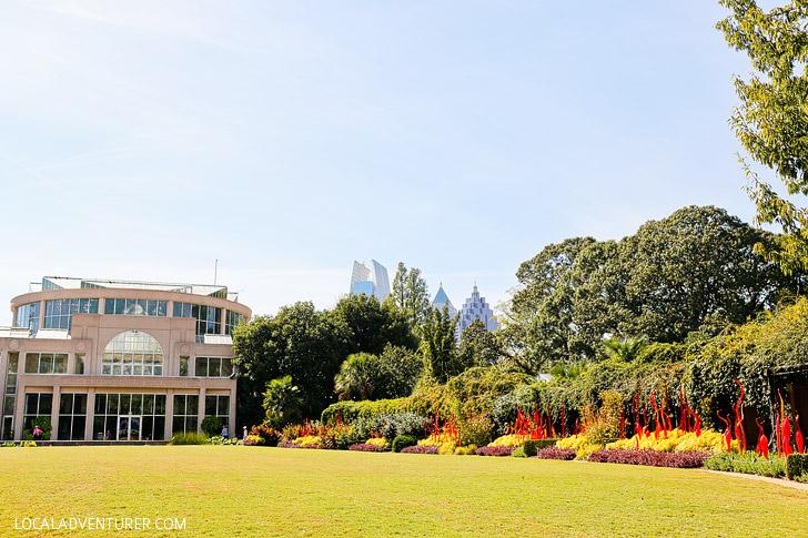 Atlanta Botanical Garden Chihuly Exhibit // localadventurer.com