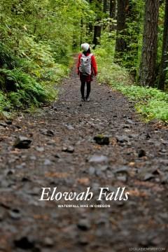 Elowah Falls Hike Near Portland Oregon // localadventurer.com