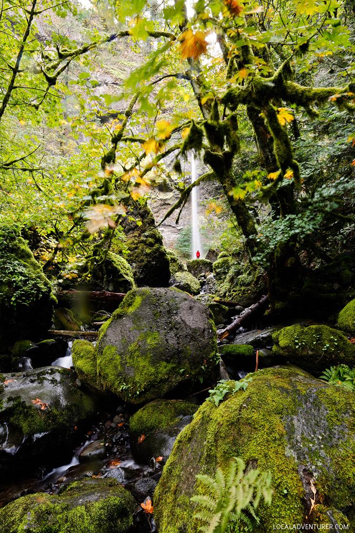 Elowah Falls Hike Oregon // localadventurer.com