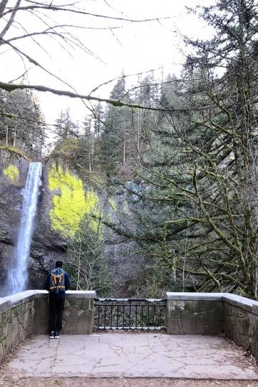 Latourell Falls is the first waterfall you'll come across as you enter the Columbia Gorge from Portland. It's an easy waterfall hike and only 30 minutes away from the city. // localadventurer.com