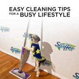 Easy Cleaning Tips for a Busy Lifestyle