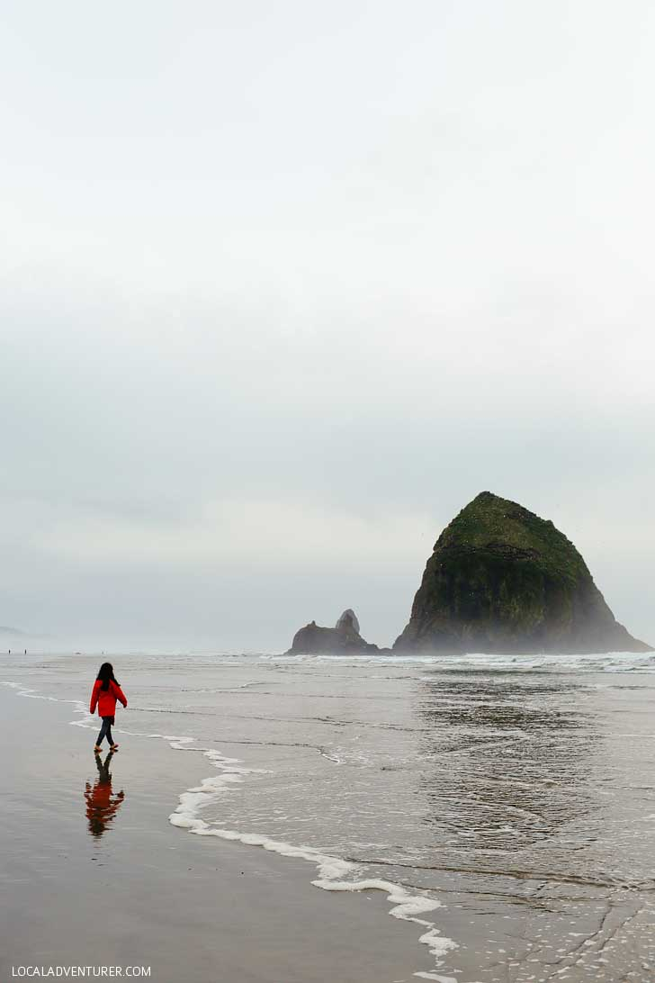 Haystack Rock, Cannon Beach (15 Best Day Trips from Portland Oregon) // localadventurer.com