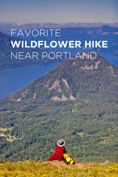 The Best Wildflower Hike Near Portland - Dog Mountain Trail, Columbia River Gorge, Washington // localadventurer.com
