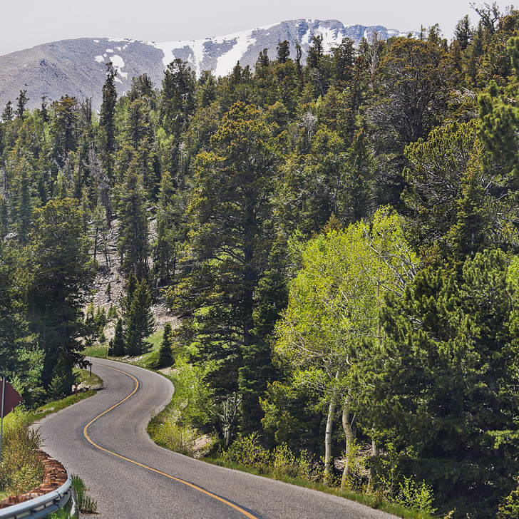 Great Basin National Park Directions and Road Conditions + More Tips for Your Visit // localadventurer.com