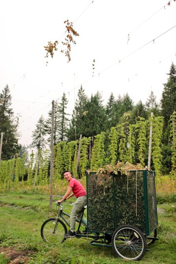Persephone Brewing Company + Your Essential Guide to the Sunshine Coast BC Ale Trail // localadventurer.com