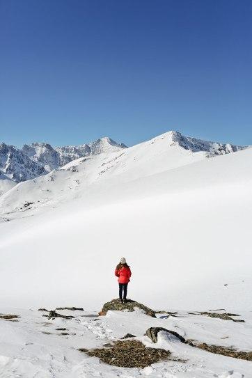 whistlers peak jasper national park - 15 Unforgettable Things to Do in Jasper National Park
