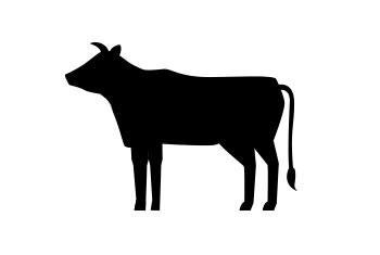 Beef - Ground BULK (10lb) - Western Prime