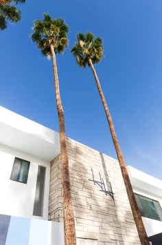 HolidayHouse-PalmSprings-ZekeRuelasPhoto-8