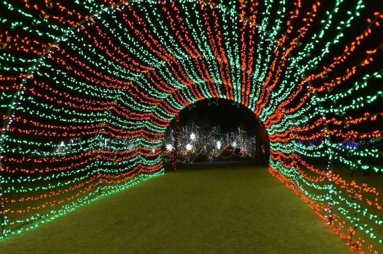 Tunnel of Lights TLD WildLights