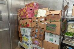 Food Donation_20_LO