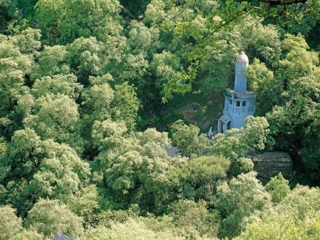 dhouj village mangar bani forest