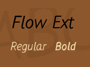 Flow Ext