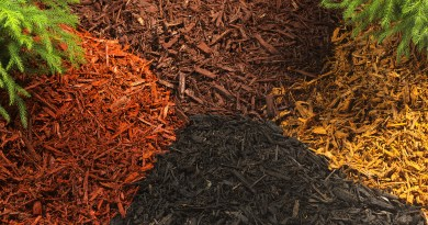 The many facets of mulch