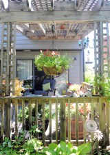 The pergola on the deck.