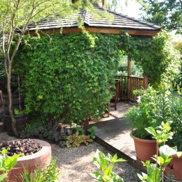Just off the main deck, the clematis-covered gazebo is where Debbie and George eat most of their summer meals.