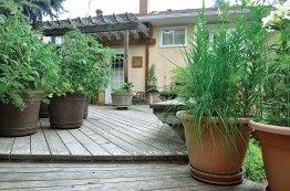 wooden-walkway-deck