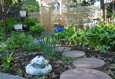 Planning your first garden