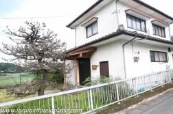aso kumamoto japan-3352