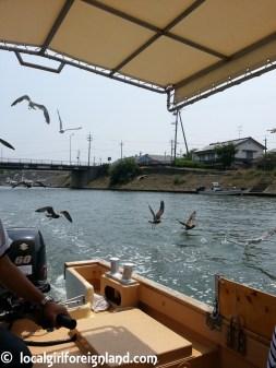 sanin-matsushima-yourun-uradome-coast-tottori-japan-120120
