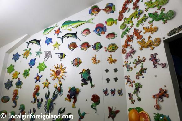 aquarium de la guadeloupe-2160